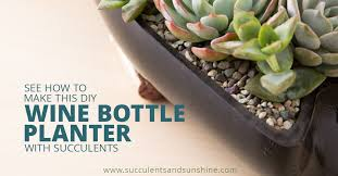 diy wine bottle planter for succulents succulents and sunshine