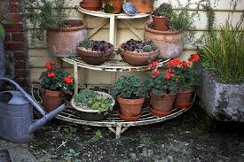 8 tips for fall and winter container gardening
