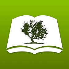 bible study articles archives olive tree