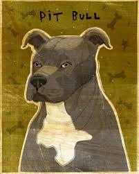 american pitbull terrier puppies for sale uk american pit bull terrier print various colors john w golden art
