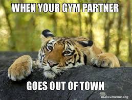 Gym Partner Meme - when your gym partner goes out of town sad tiger make a meme