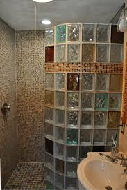 Bath To Shower 7 Myths About Glass Block Showers Glass Blocks Glass And Walls