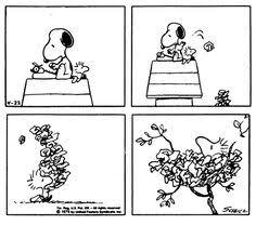 peanuts dibujos snoopy charlie brown peanuts gang