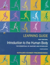 Anatomy And Physiology Introduction To The Human Body 9780065013634 Introduction To The Human Body The Essentials Of