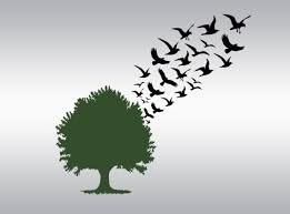 wedding svg tree svg birds svg flying birds svg flying