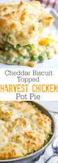 Pot Pie Variations by Cheddar Biscuit Topped Harvest Chicken Pot Pie Recipe Pot Pies