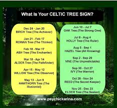 what is your celtic tree sign druid tree symbols by birthday month