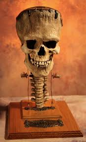 Halloween Skeleton Prop by 284 Best Sets Props Displays Halloween Images On Pinterest