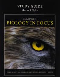 buy study guide for campbell biology in focus book online at low