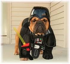 Halloween Costume Darth Vader Dogs Star Wars Costumes Darth Vader Yoda Ewok 29 Pictures