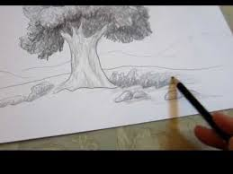 How To Draw Landscapes by How To Draw A Tree In Landscape Drawing Techniques Youtube