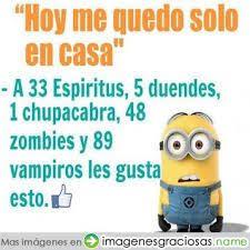 Minions Memes En Espaã Ol - 26 best minions memes en español images on pinterest funny images
