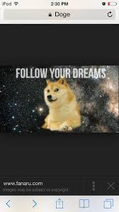 8 best dank doges images on pinterest ha ha doge meme and funny stuff