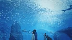aquarium led lighting u2022 orphek