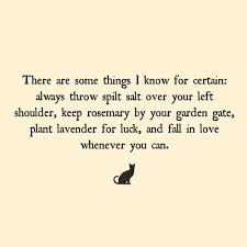 best 25 practical magic quotes ideas on practical