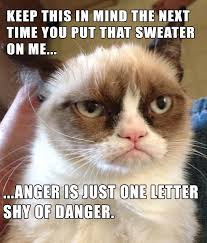 Angry Meme Cat - anger is just one letter shy of danger cats grumpy cat