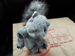 2010 12 01 Archive Independent Scientologists Squirrel Humor 4 Operation
