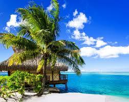 photos bora bora french polynesia bungalow nature sky tropics palm