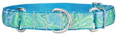 paisley ribbon buy green paisley ribbon martingale dog collar online