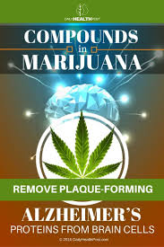 41 best images about cannabis on pinterest dark energy portal