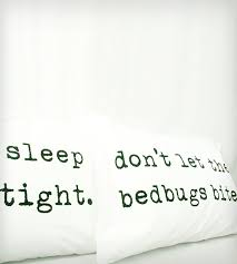 Dont Let The Bed Bugs Bite Best 25 Sleep Tight Ideas On Pinterest Night Night Sleep Tight