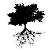 black tree stock illustrations royalty free gograph