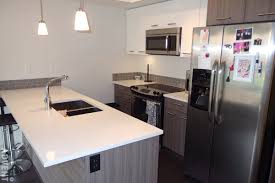Kitchen Cabinets Port Coquitlam Apartment Rental Port Coquitlam The Spring 2214 Kelly Advent