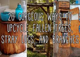 these diy projects made from upcycled fallen trees will inspire you