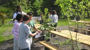 native plant restoration layerwetlandwiki 4th grade habitat restoration project