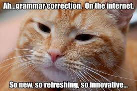 Grammar Correction Meme - grammar correction cat macros