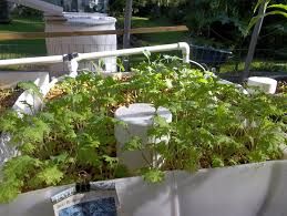 how to make an aquaponic garden