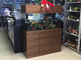 batfish aquatics custom installation design leasing and has been