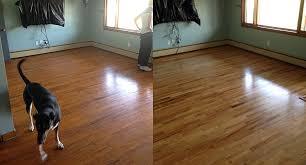 Refinished Hardwood Floors Before And After Refinishing Hardwood Floors Pretty Purple Door Oak Hardwood