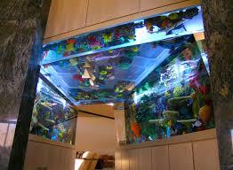 Home Aquarium Home Calaquaria