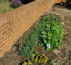 crescent dc garden wall design and construction north va dc md