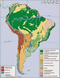 south america map rainforest climate map of america free printable maps