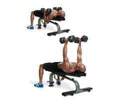 neutral grip dumbbell bench press part 31 neutral grip incline