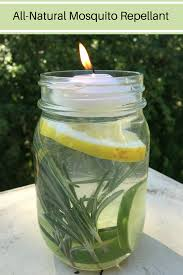 Mosquito Repellent For Home by Put These Bug Repelling Mason Jars Outside And Mosquitoes Will