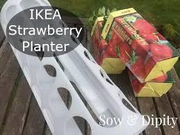 Diy Strawberry Planter by Ikea Strawberry Planter Youtube