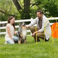 Backyard Agility Course Amazon Com Zip U0026 Zoom Outdoor Agility Kit 3 Obstacle Dog
