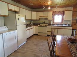 Replacing Kitchen Cabinet Hinges Kitchen Images Of Kitchen Cabinets Lowes Kitchen Oak Cabinets