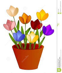 Images Of Tulip Flowers - isolated tulips flowers in pot royalty free stock image image