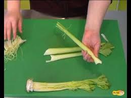 cuisiner celeri comment préparer le céleri