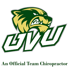 Chiropractor Duties Family Friendly Dentist Chiropractor And Massage Therapy In