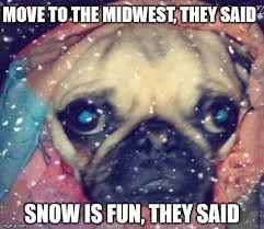 Winter Is Coming Meme Maker - image tagged in winter pugs snow sad winter is coming memes imgflip