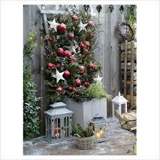 Outdoor Christmas Decorations Pots by Outdoor Christmas Pots Gap Photos Garden U0026 Plant Picture