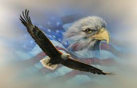 Window Wall Mural Highlands Peel American Flag Soaring Bald Eagle Rv Trailer Wall Mural Decal
