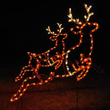 Deer Christmas Lights Christmas Christmas Lights On Busheseminee Website Marvelous