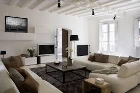 black white motif fur rug white vinyl sofa gray and brown cushion
