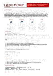 business development executive resume business development cv pertamini co